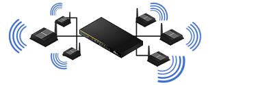 Professional Wireless LAN